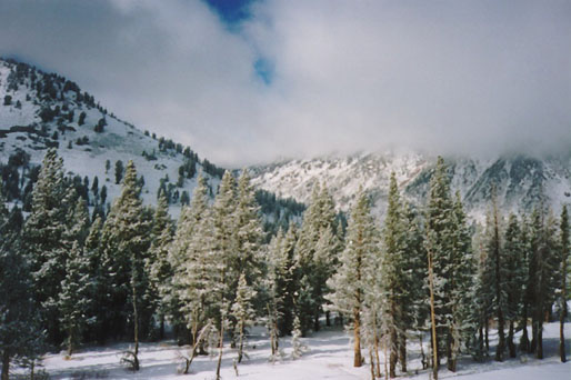 Snow Over the pass to Lake Tahoe
